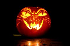 Patterns of cat carved into a Halloween Pumpkin. A huge collection of samples. Cat Pumpkin Carving, Halloween Pumpkin Stencils, Pumpkin Carving Patterns, Halloween Mug, Halloween Treats, Halloween Pumpkins, Halloween Decorations, Pumpkin Carver, Pumpkin Designs