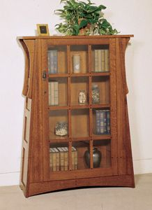 An interesting bookcase with a door to protect the books from the dusties