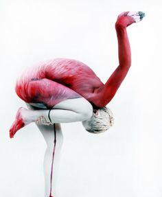 Image detail for -Body Painting de Gesine Marwedel body-painting-animal-gesine-marwedel ...