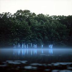 via cordisre.tumblr.com, photography, color, water, trees, mystical