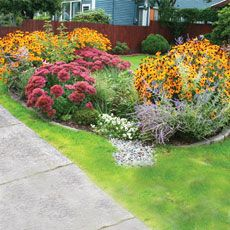 How to build a rain garden. Maybe this will help the big puddle in my driveway