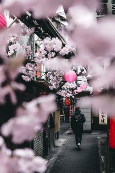 Stunning perspective hokkaido, aesthetic japan, japanese aesthetic, tokyo c Osaka Japan, Japon Tokyo, Aesthetic Japan, Japanese Aesthetic, City Aesthetic, Japan Street, Japan Travel Guide, Tokyo Travel, Asia Travel