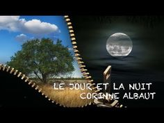 Poésie ... Le jour et la nuit ... Corinne Albaut ...