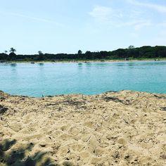 #blumen #blume #italy #italien #italia #italian #sommer #summer #meer #bibione #lignano #wolken #adria #beach #strand #sand #flussufer #fluss
