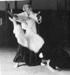 Aikido - Les techniques