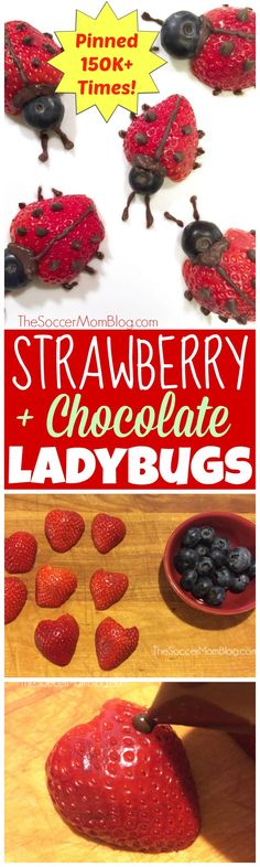 These easy strawberry ladybugs make eating fruit fun! A healthy after school snack or Valentine's dessert for kids that they will love to eat! (fruit dessert for kids) Healthy Fruit Desserts, Fruit Appetizers, Appetizers For Kids, Fruit Snacks, Healthy Fruits, Healthy Snacks For Kids, Fruit Recipes, Party Snacks, Kid Snacks