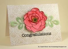 Congratulations | Flickr - Photo Sharing!