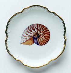Anna Weatherley Seascape Shells
