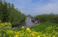 Haventje aan de Buitendijk