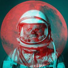 Wookies in Space