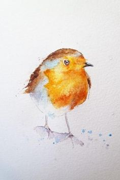 How to paint a robin in 8 easy steps. – Page 2 – watercolours by rachel Watercolor Bird, Watercolor Illustration, Watercolor Landscape, Watercolor Paintings For Beginners, Watercolor Portraits, Bird Drawings, Bird Art, Painting & Drawing, Colours
