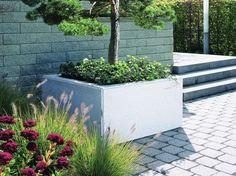 Monoscape Scala Concrete Planter