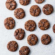 Dark chocolate and olive-oil cookies
