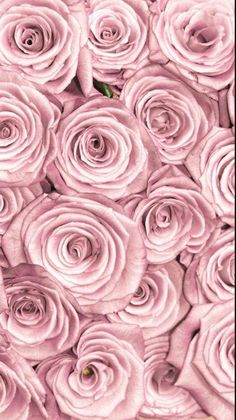 Backgrounds backgrounds link=>website with many lovely images. rose gold wallpaper for iphone 7 plus wallpaper rocket Iphone Wallpaper Marble, Rose Gold Marble Wallpaper, 7 Plus Wallpaper, Gold Wallpaper Background, Flower Wallpaper, Pattern Wallpaper, Rose Background, Pinky Wallpaper, Pink And Gold Wallpaper