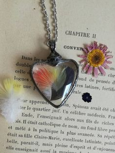 Heart Pendant necklace terrarium with feathers of by BUSTANI