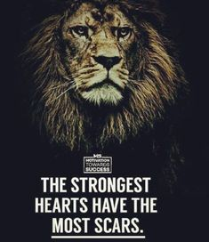 247 Motivational Inspirational Quotes can find Strong quotes and more on our Motivational Inspirational Quotes 34 Strong Quotes, Positive Quotes, Strong Motivational Quotes, Citation Lion, Wisdom Quotes, Me Quotes, Qoutes, Scar Quotes, Happy Quotes