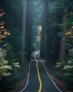 The 7 Best Travel Insurance Companies. Image Nature, Nature Photos, Beautiful Roads, Beautiful Places, Beautiful Sunset, Wonderful Places, Best Travel Insurance, Nature Photography, Travel Photography