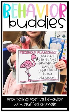 Behavior Buddies: Using Stuffed Animals as a Positive Classroom Management Tool