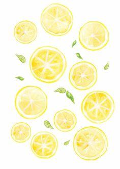 le blog d'oz*  #lemon #patternlemon #citron#dessin