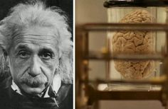 10 Fascinating and Weird Preserved Body Parts of Iconic Historical Figures! - https://www.thevintagenews.com/2015/08/17/10-fascinating-and-weird-preserved-body-parts-of-iconic-historical-figures/