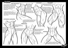 Tutorial: Pelvis + Butts 1 by Bambs79