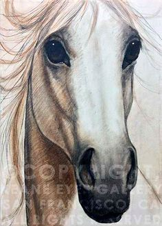 Margaret Keane I love this horse painting.