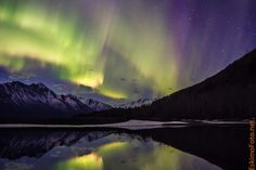 Foto: Aurora borealis boven Alaska   Alaska Dispatch