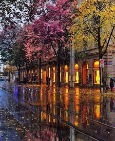 by golden_heart / Romantic autum rain…☔️ Loc:Bahnhof ,Zurich ,Switzerland… Places To Travel, Places To See, Wonderful Places, Beautiful Places, Nature Architecture, Switzerland Vacation, Belle Villa, Amazing Destinations, Beautiful World