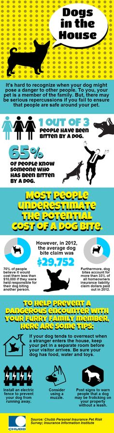CPI Pets Infographic_Updated 8.21.13