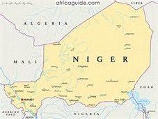 Země nemá přístup k moři, ale protéká jí řeka Niger, podle které se také jmenuje. Většinu území tvoří poušť nebo polopoušť (Sahel), přičemž podnebí je celoročně velice horké
