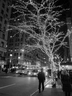 Christmas Lights on 5th Avenue