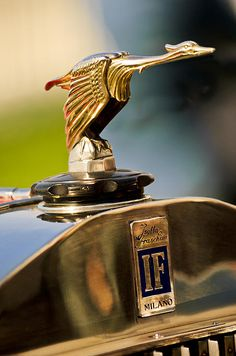 1925 Isotta Fraschini Tipo S Corsica Boattail Speedster Hood Ornament by Jill Reger Ornaments (Mascots) Retro Cars, Vintage Cars, Antique Cars, Car Badges, Car Logos, Car Hood Ornaments, Automotive Art, Automotive Engineering, Automotive Industry