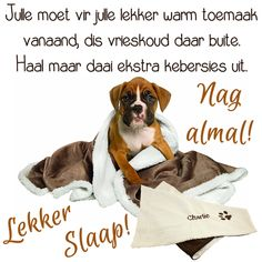 Goeie Nag, Afrikaans Quotes, Good Night Quotes, Special Quotes, Sleep Tight, Cute Quotes, Friendship Quotes, Birthday Wishes, Birthday Greetings