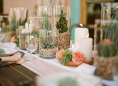 Use clear cylinder vases and succulents for a table centerpiece.   Fill each cylinder with dry pinto beans, split peas, red lentils or other brightly colored seeds then place a variety of different succulents such as mini cactus and echeveria. Use enough beans to cover the roots and cluster vases on the table.