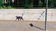 #shadow #street #cat #streetart #meow #art #catania #light #cute #beautiful #city by gabriellagiaccones17