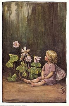 """""""Wood Sorrel Fairy"""" by Cicely Mary Barker - Flower Fairies of the Spring"""