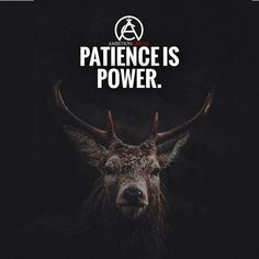 """1,780 Likes, 9 Comments - Entrepreneur Motivation (@ambitioncircle) on Instagram: """"Never underestimate the power of patience! If you had to rate your level of patience 1-10 what…"""""""