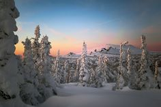 """Photo from album """"зима"""" on Yandex. Russian Winter, Gifs, Ely, Mountains, Yandex, Photography, Travel, Outdoor, Album"""
