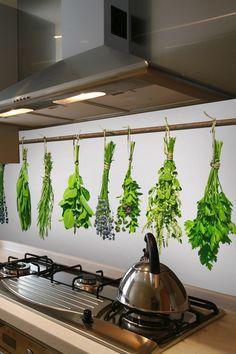 Bylinky ako motív kuchynskej zásteny   DIMEX Stencil, Plants, Stenciled Table, Plant, Stenciling, Planets