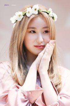 Kpop Girl Groups, Kpop Girls, Secret Song, Sakura Miyawaki, Fandom, Japanese Girl Group, The Wiz, Me As A Girlfriend, Hiphop
