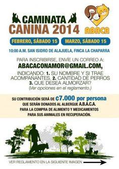 Caminatas Canina 2014http://www.desktopcostarica.com/eventos/2014/caminatas-canina-2014