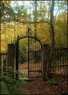 how to make metal garden art Garden Gates And Fencing, Garden Doors, Fence Gate, Garden Paths, Old Gates, Metal Gates, Wrought Iron Fences, Metal Garden Art, Entrance Gates