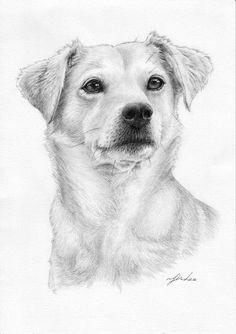 Custom portrait pet portrait drawingdog cat. etc | Etsy Pencil Portrait Drawing, Pencil Drawings Of Animals, Custom Pencils, Cat Sketch, Special Characters, High Resolution Photos, Dog Art, Pet Portraits, Sketches