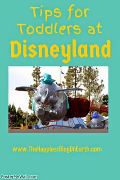 kelly.baccash@gmail.com | 203-345-5663 | 3 Tips for Toddlers at Disneyland (what your parents need to know)