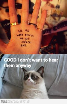 The more grumpy cats I see, the funnier they get.