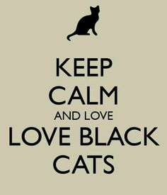 Black cat love
