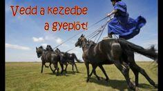 ÉletVáltó Videók - 4. Rend a lelke mindennek! Horses, Animals, Animales, Animaux, Animal, Animais, Horse