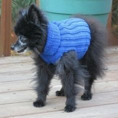 Free+Knitting+Patterns+Dog+Sweaters | Try this link for free doggie sweater patterns: