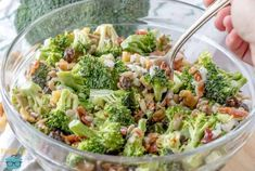 Creamy Broccoli Salad in a bowl with spoon Amish Broccoli Salad, Brocolli Salad, Asian Broccoli, Fresh Broccoli, Asian Ramen Salad, Superfood Salad, Main Dish Salads, Carrot Recipes, Country Cooking