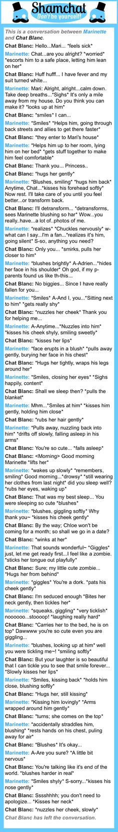 A conversation between Chat Blanc and Marinette